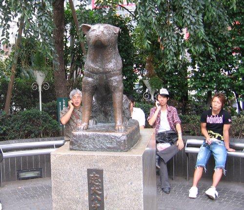 Хатико: Самый верный друг - Hachiko: A Dog's Story : DVDrip + БОНУС.